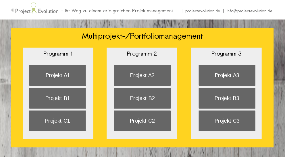 Multiprojektmanagement und Portfoliomanagement